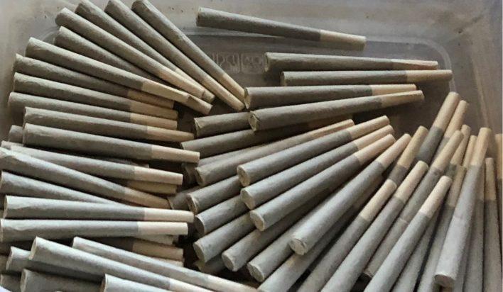 hemp cbd pre rolls